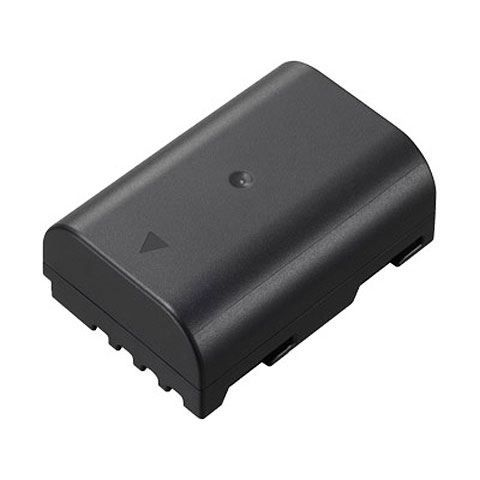 Panasonic DMW-BLF19E Battery Pack